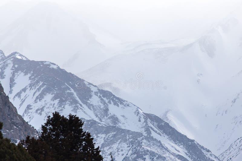 Snö-korkade berg av Tien Shan i vintern kazakhstan royaltyfria bilder