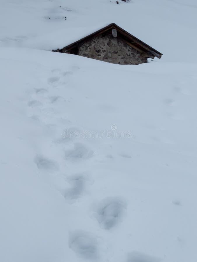 Snö och berg arkivbilder