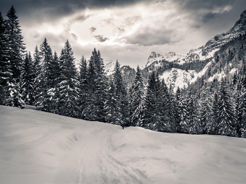 Snö och berg fotografering för bildbyråer