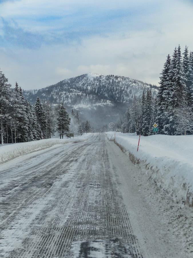 Snö och is för Norge vinterväg i skogen arkivfoton