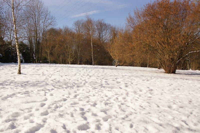 Snö och sol - vintriga landskap - Elancourt, Frankrike arkivfoton