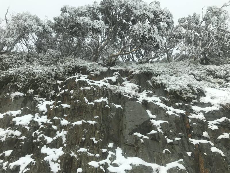 Snö på en klippa arkivbilder