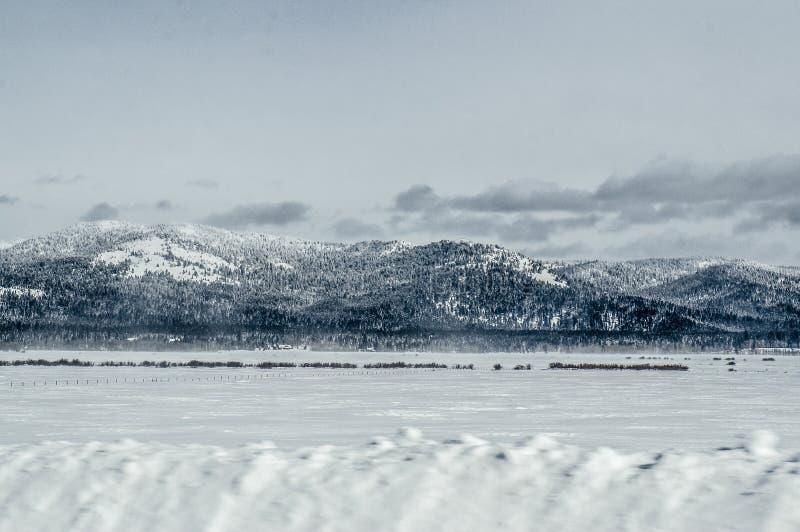 Snö som driver vägen, huvudväg 20, ön parkerar, Idaho royaltyfria bilder
