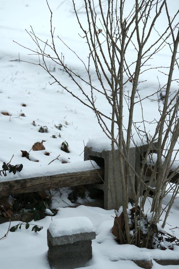 Snö som ett accesory till naturen arkivfoto