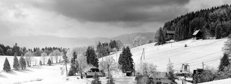 Snö-täckt bred panoramautsikt för kulleflank royaltyfria bilder