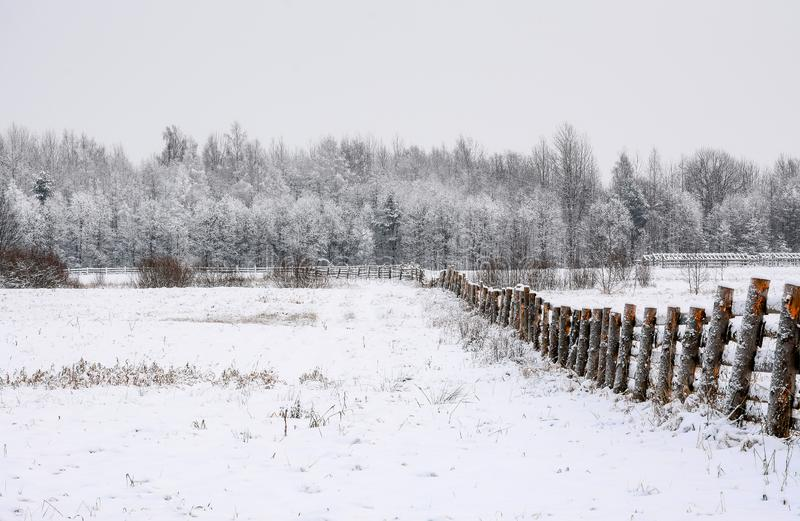 Snö-täckt fält i bygden Ett trästaket av jordbruksmark arkivfoton
