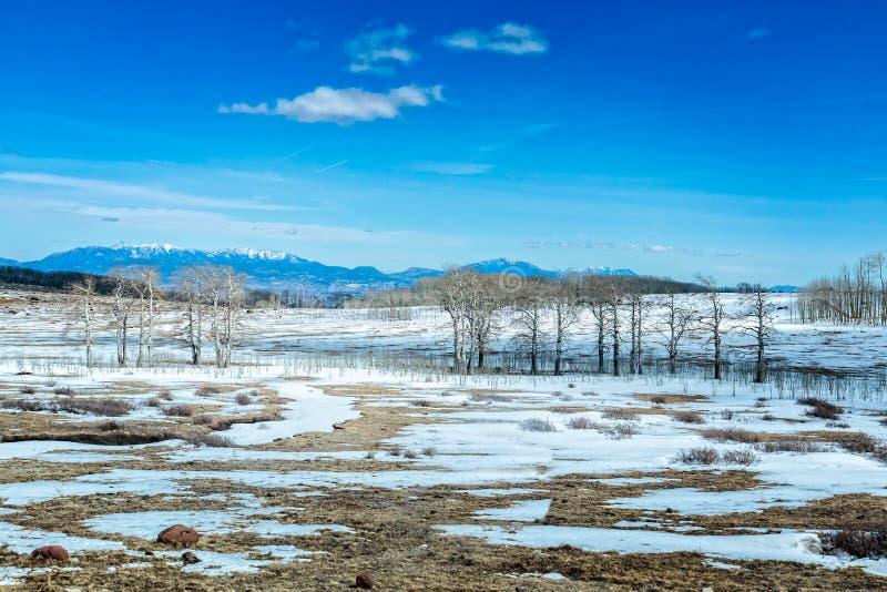 Snö täckt landskap i USA i sydvästliga Utah längs scenisk Byway 12 arkivfoton