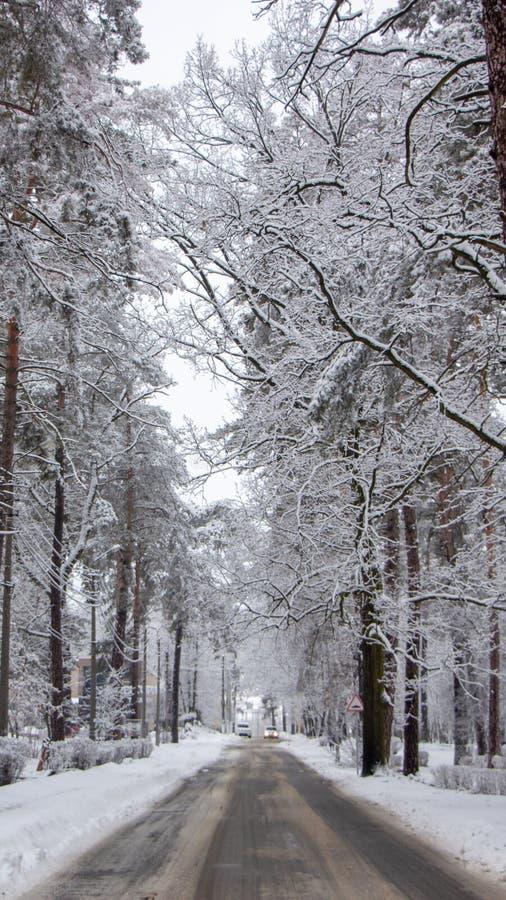 Snö-täckt lantlig gata, härligt vinterlandskap, i molnigt väder royaltyfria foton