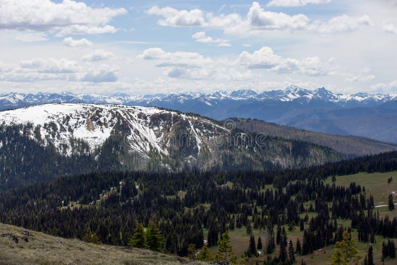 Snö-täckte berglutningar i British Columbia arkivbild