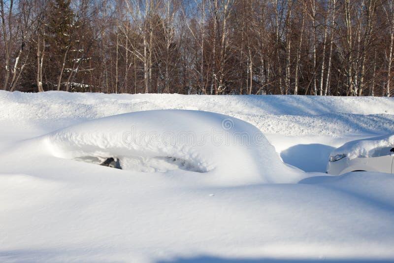 Snö-täckte bilar på parkeringsplatsen, en snöstorm i Ryssland Hjälpmedel för snöborttagning royaltyfria bilder