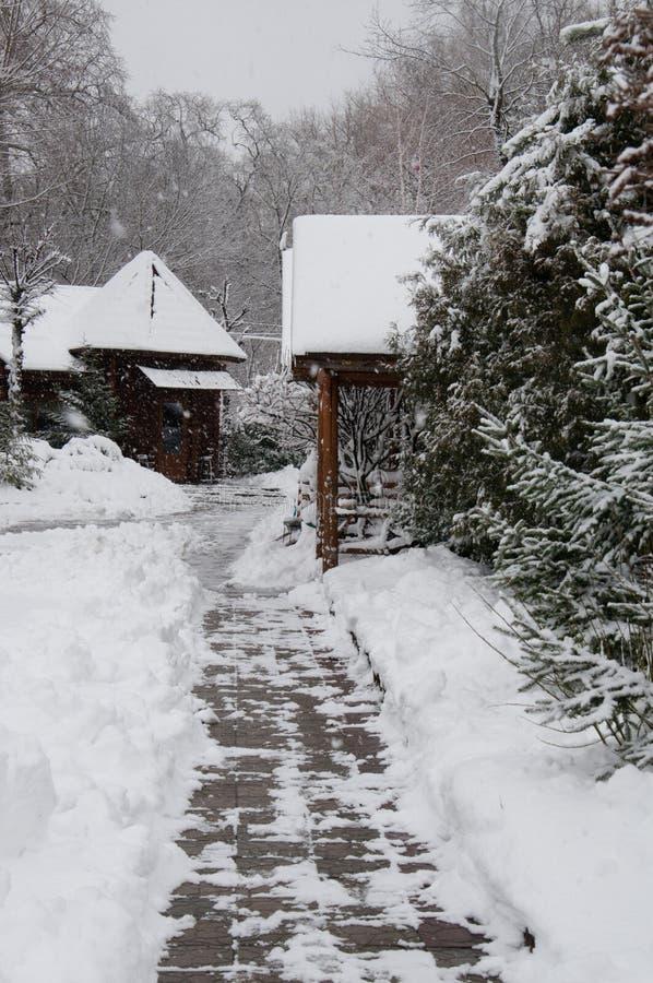 Snö-täckte hus i en vinter parkerar, gjort klar en bana av tegelplattor och drivor royaltyfri fotografi