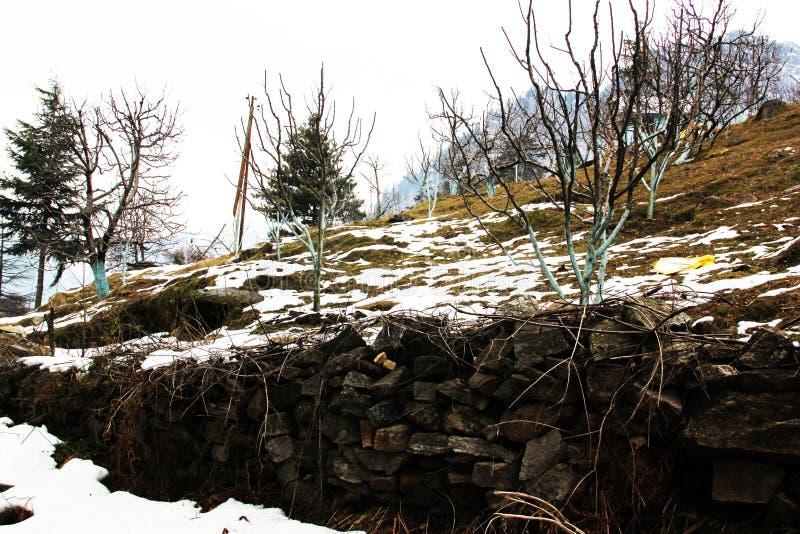 Snö täckte land i den Himalayan bergdalen royaltyfria bilder