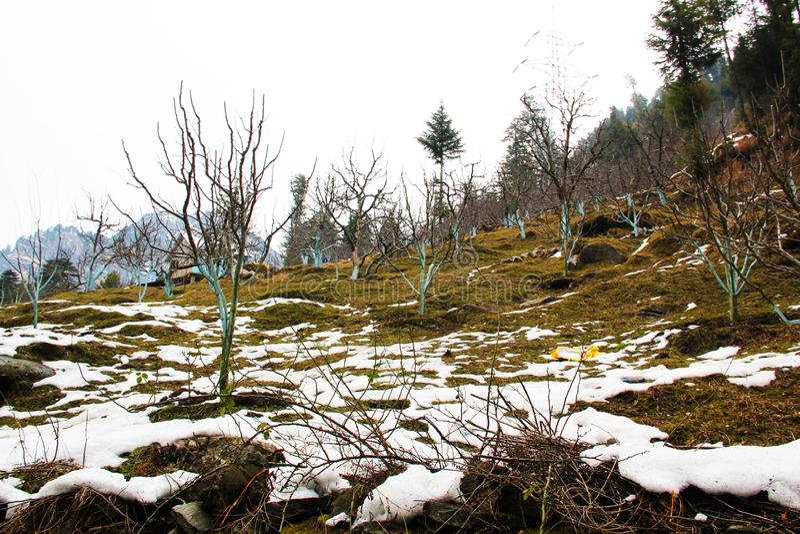Snö täckte land i den Himalayan bergdalen fotografering för bildbyråer