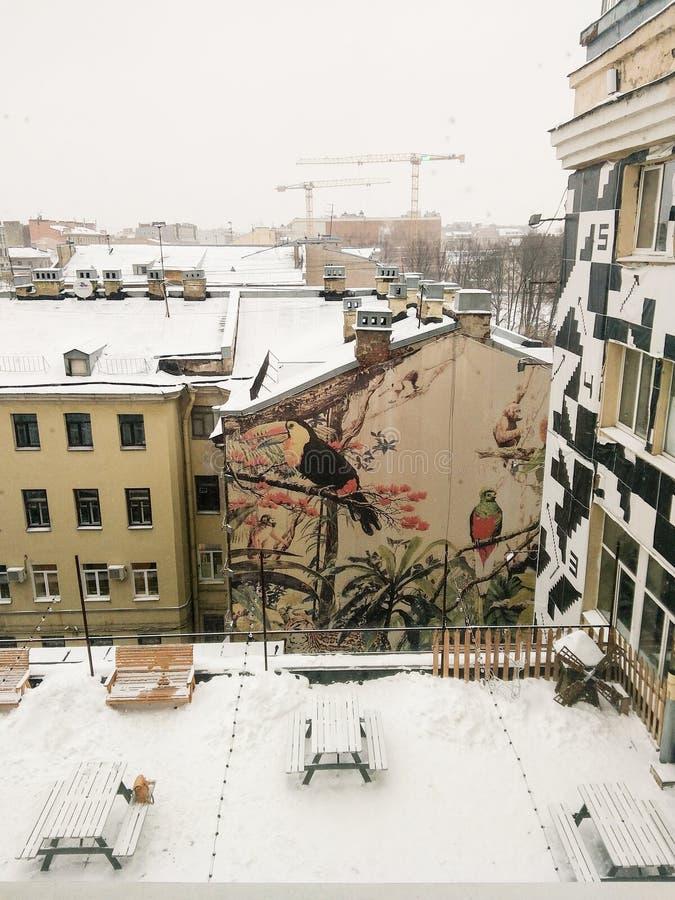 Sn?-t?ckte takvindgolv fotografering för bildbyråer
