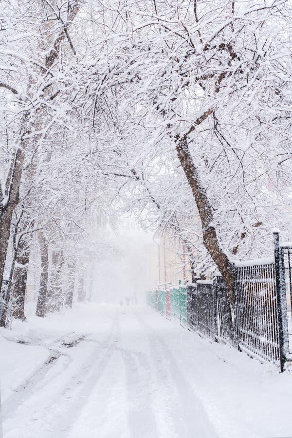 Snö täckte träd och vägen under rikligt snöfall i vinterdag arkivbild