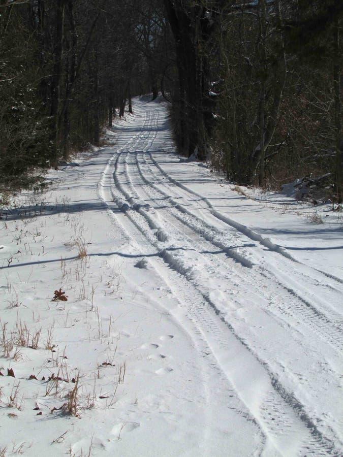 Snö täckte trädet fodrade landsvägen royaltyfria bilder