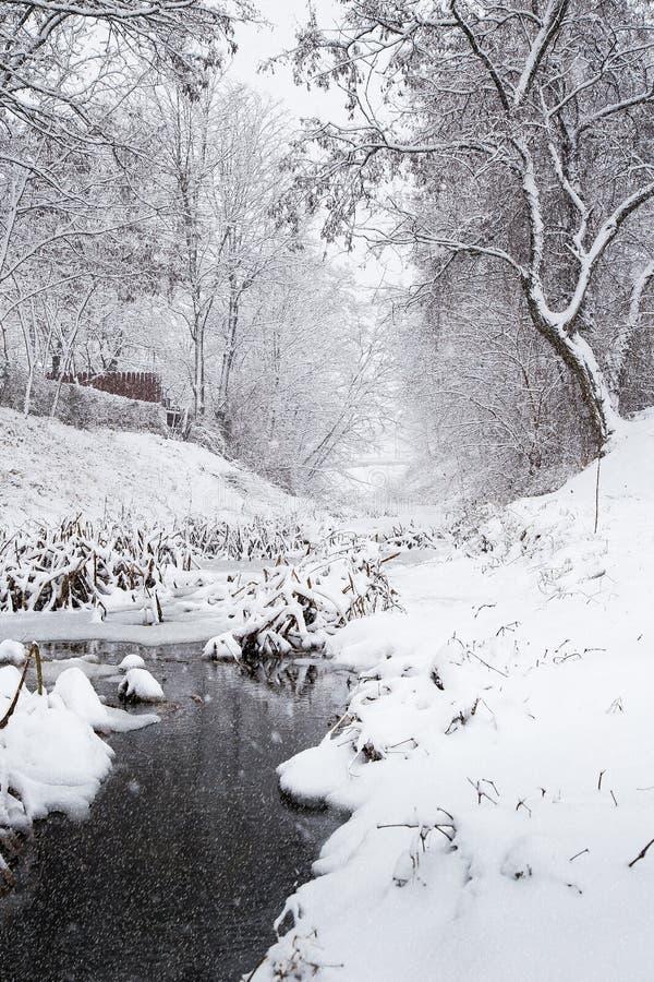 Snöa över en vinterström royaltyfria bilder