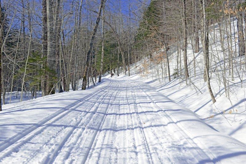 Snöa den dolda vägen i skogen på kall dag royaltyfria foton