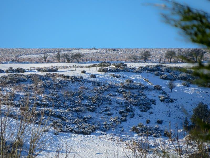 Snöa dold betesmark och hedland av det Esclusham berget Wales royaltyfri foto