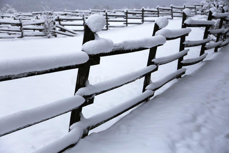 Snöa fylld tid för hästfållavintern utan hästar Grund dep royaltyfri fotografi