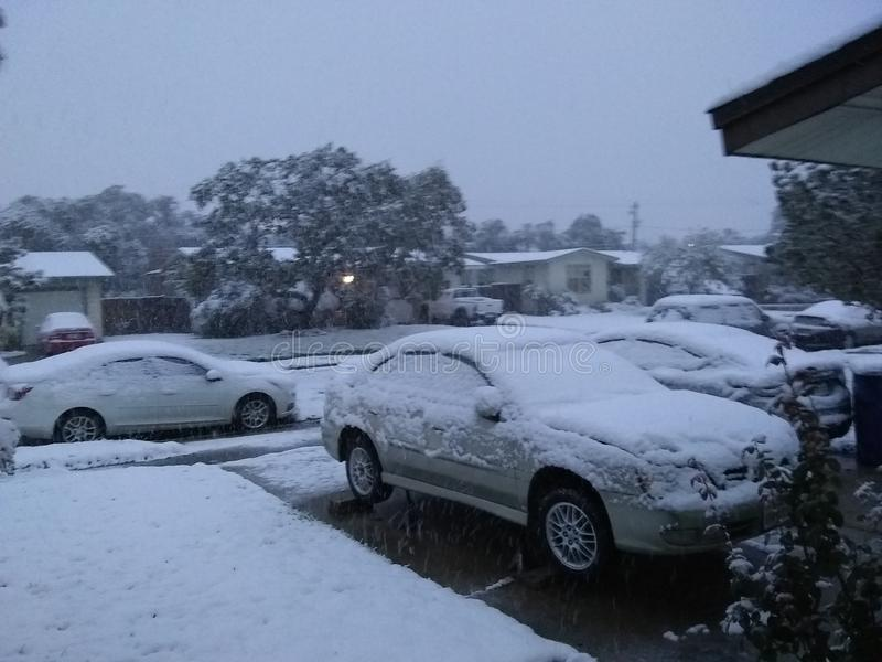 Snöa i Corpus Christi tx arkivfoto