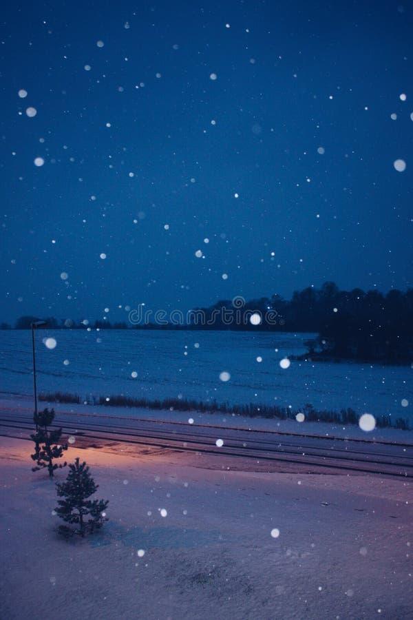 Snöa på natten royaltyfria bilder