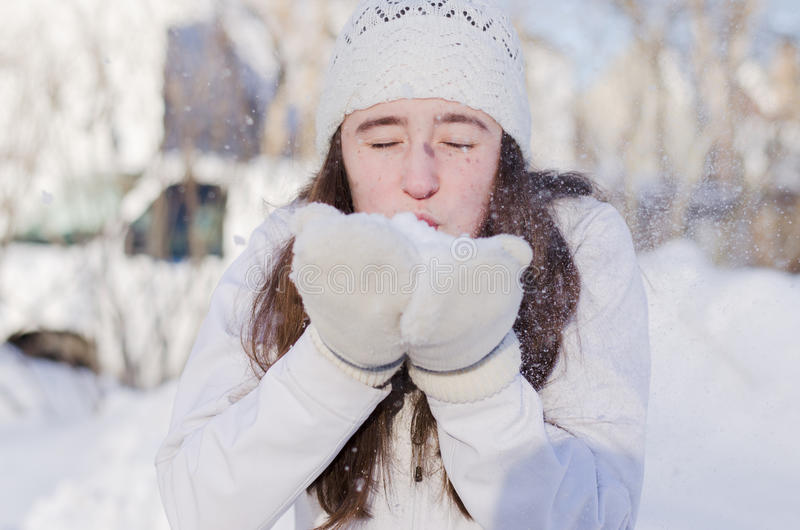 Snöblåsare fotografering för bildbyråer