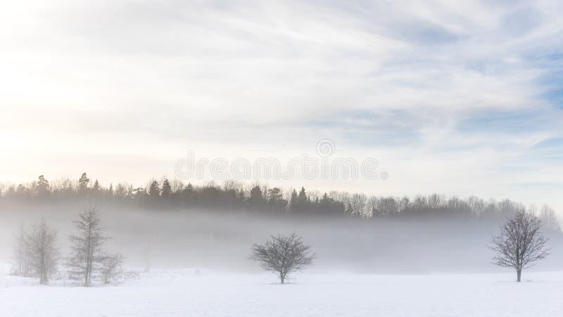 Snödimma av vintern, Stockholm, arkivfoton