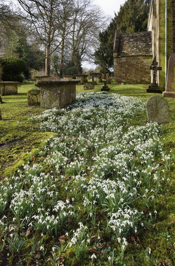 Snödroppar på St Marys Norman Church, Beverston royaltyfri bild