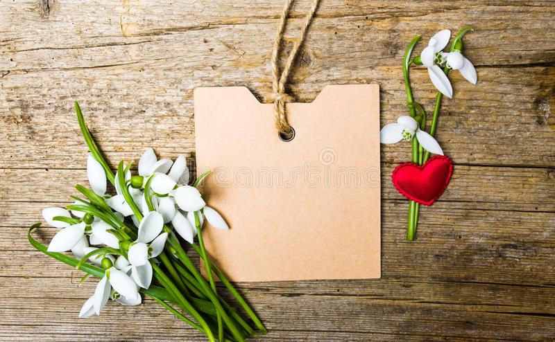 Snödroppeblommor och ett tomt anmärkningskort royaltyfri foto
