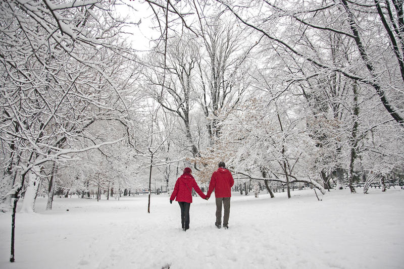 Snöförälskelse royaltyfria bilder