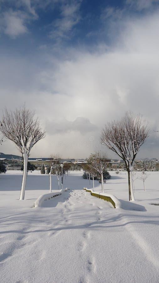 Snöfall i Istanbul 14 royaltyfri bild
