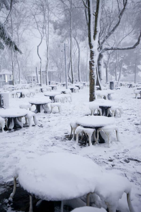 Snöfall i Istanbul royaltyfri fotografi