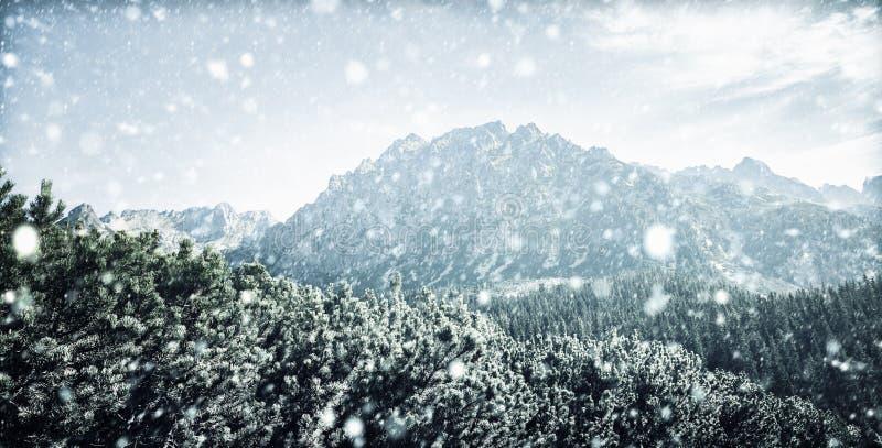 Snöfall i Tatra berg i vintertid royaltyfria bilder