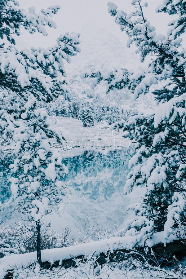 Snöfall på bergsjön royaltyfri fotografi