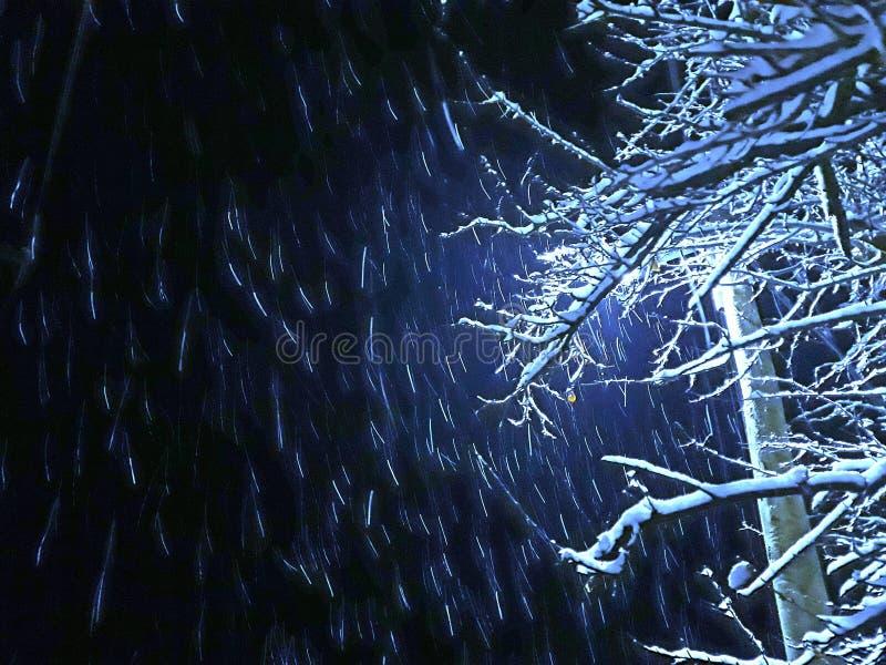 Snöfall på natten royaltyfria foton