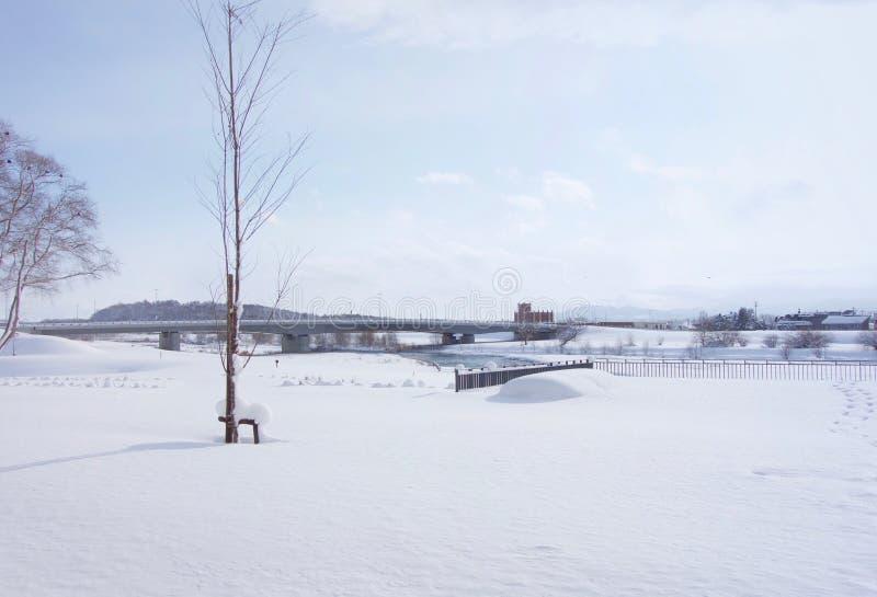 Snöfilt i Asahikawa, Hokkaido, Japan royaltyfri bild