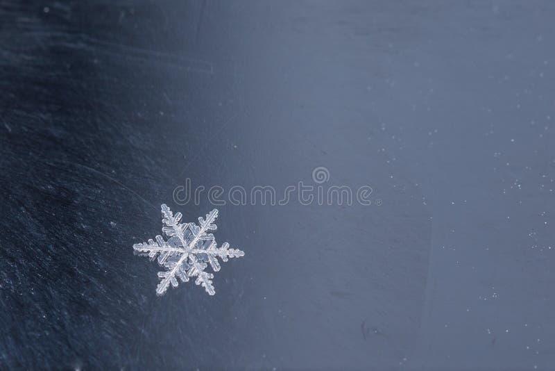 Snöflinga arkivfoto