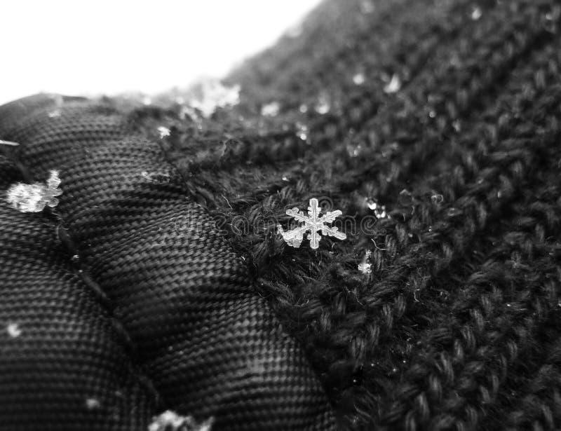 Snöflinga på en hand royaltyfri bild