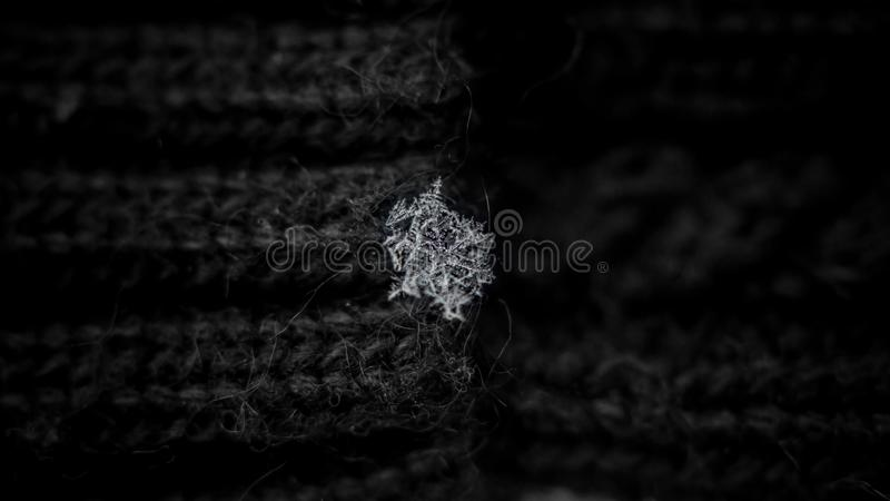 Sn?flinga p? ullr?t maskabakgrunden snowflakes naturliga sn?flingor p? stuckit, verkliga sn?flingor f?r tumvantefoto under ett sn arkivbild