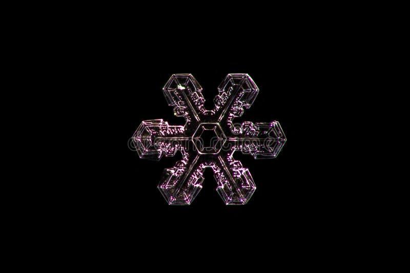Snöflingakristallcloseup som isoleras på en svart bakgrund royaltyfria bilder