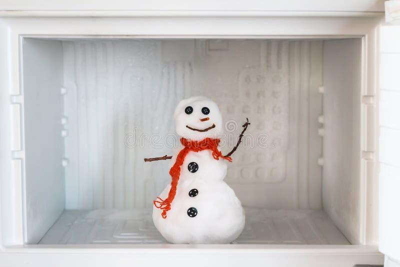 Snögubbe i tom frys För mycket av is, lokalvård och det serva begreppet Roligt banta idén arkivfoto