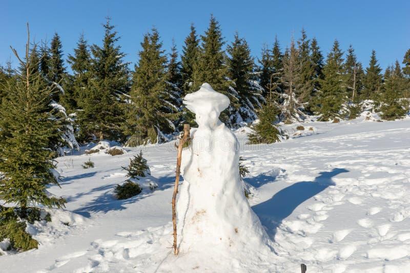 Snögubbe i vinterskog royaltyfria foton
