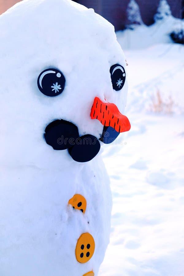 Snögubben i vintern som göras av snö, synar morotnäsvintertid royaltyfria bilder