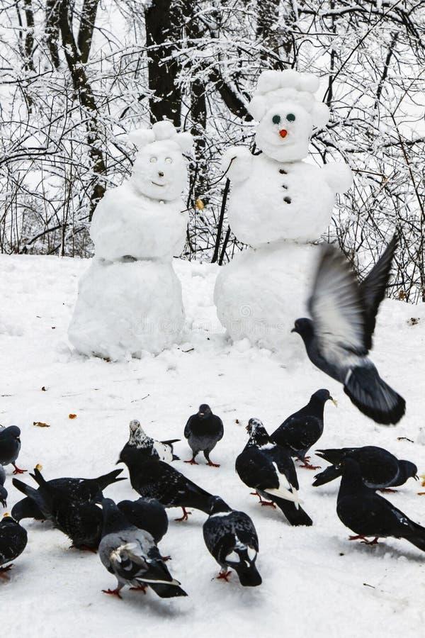 Snögubbepar i vinterskogen som göras av handen En flock av duvor som pickar korn i snön arkivfoton