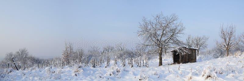 Snöig äng med logen arkivfoton