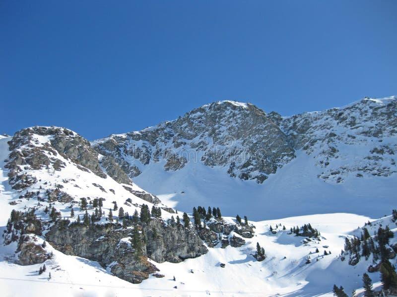 Snöig österrikiska fjällängar i vinter royaltyfria foton