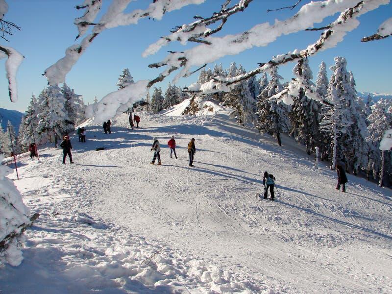 snöig överkant för berg arkivfoto