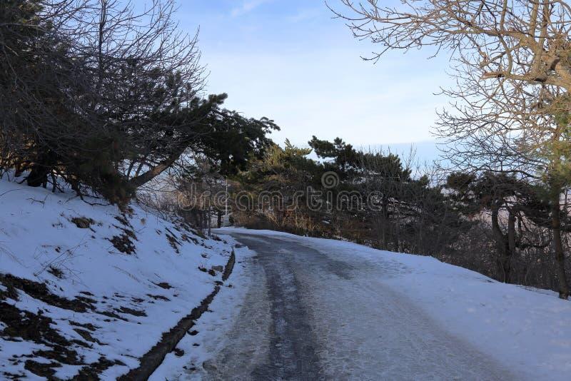 Snöig bana i bergen royaltyfri foto