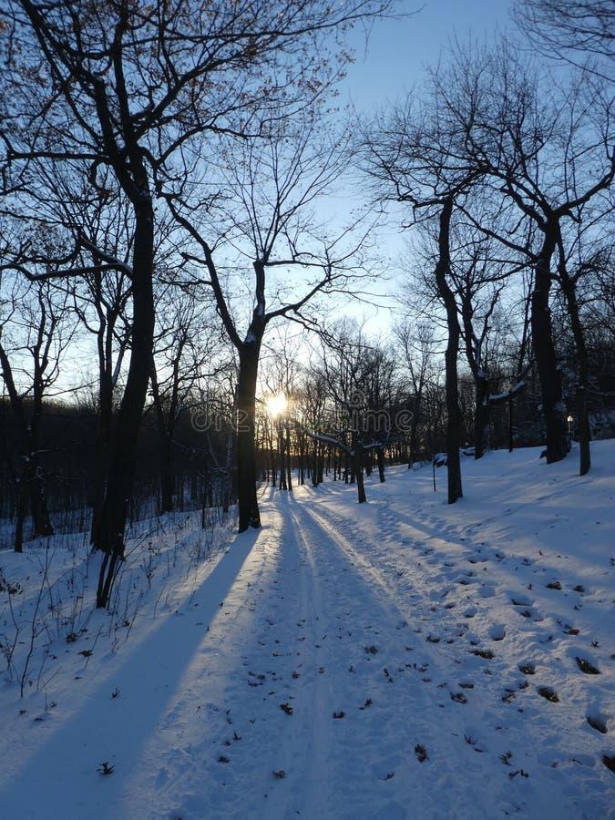 Snöig bana i Mont-kunglig person arkivfoton